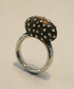 Ring: Silver, Shakudo